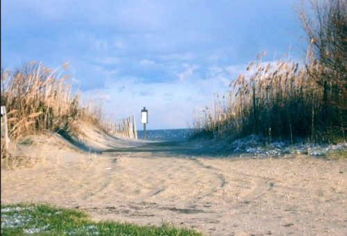 Public Access to Beaches and Other Waterways – Pending Legislation